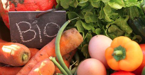 Unilever-ingredients-bio