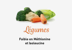 Unilever-vegetal-RHF-proteines-legumes