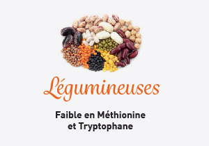 Unilever-vegetal-RHF-proteines-legumineuses